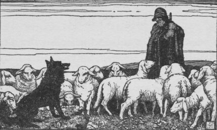 the wolf and the shepard Nora Fry book illustration